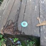 木道にも青標識