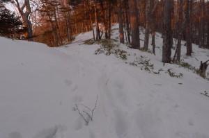 小雲取山登山道